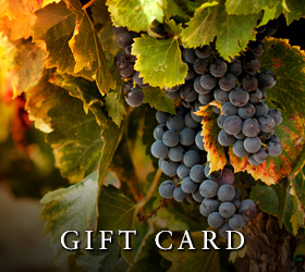 Europa Village Vineyard Tours