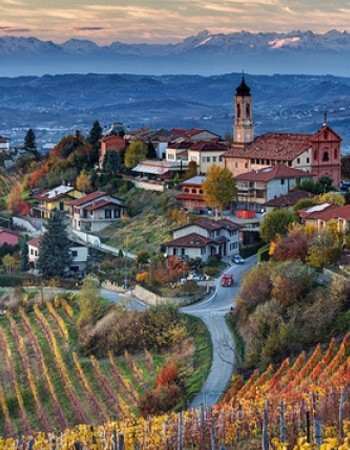 Meet the Winemakers of Piemonte, Italy Image